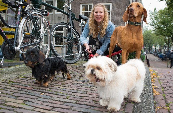 5x leuk iets goeds doen met/voor dieren!